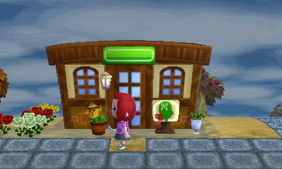 Animal Crossing New Leaf Brewster Cafe