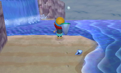 beach snowflake