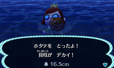 I caught a scallop (they're hard for me to get!) and my pockets were full so Pascal didn't show up. That's probably a good thing because I needed to donate it.