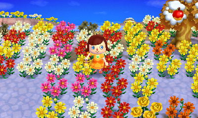 Animal Crossing New Leaf How To Get Island Flowers