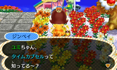 how to make a time capsule in animal crossing