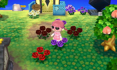 purple + black apparently = red unless a well-meaning townie planted that...