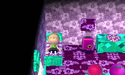 animal crossing new leaf dream suite how to keep items