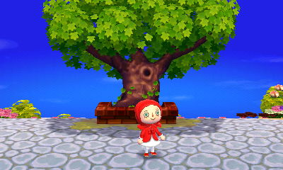 Kasen's tree is huge and peaceful.