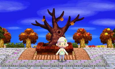 Hanabi's dormant winter tree. It'll be back in spring. (Though it scared me last year in Kasen!)