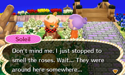 You're surrounded by roses Soleil. Not much of a gardener are you?