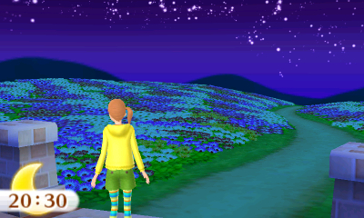Flower Garden at night.