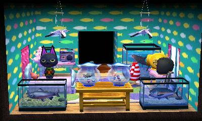 kiki's fish room